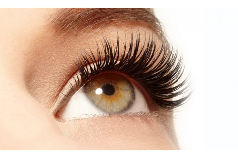 Artificial Eyelash